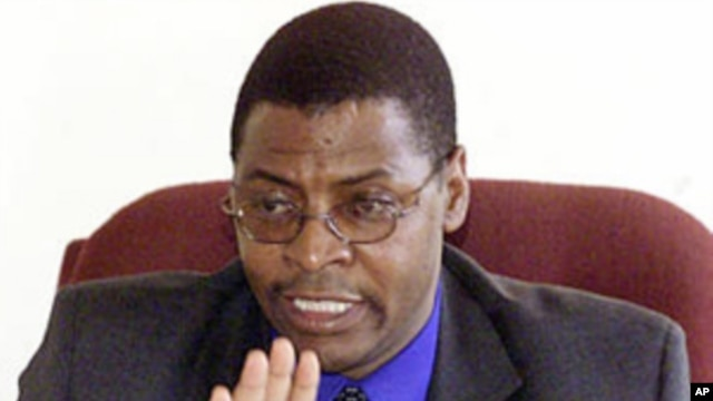 Industry Minister of the smaller Movement for Democratic Change Welshman Ncube (file photo)