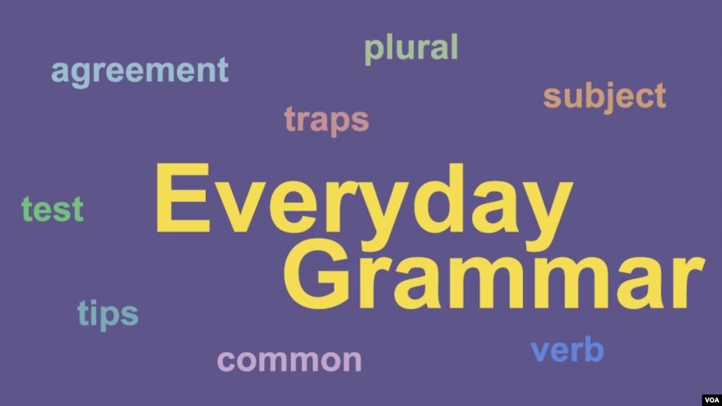 Everyday grammar dodoes you understand subject verb agreement everyday grammar dodoes you understand subject verb agreement platinumwayz