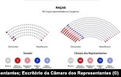 Gráfico - O Rosto do Congresso Americano - Representação Racial