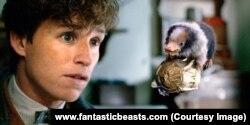 Fim Fantastic Beast 2. (Foto: Courtesy)