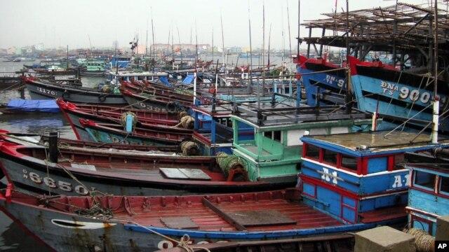 Tàu đánh cá neo đậu tại Đà Nẵng, Việt Nam.