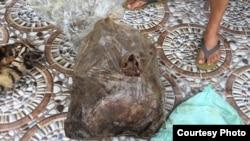 Tulang belulang harimau Sumatera yang berhasil disita polisi dari tangan pelaku. (Courtesy: Polda Riau)