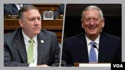 جیمز متیس (راست) و مایک پمپئو گزینه های پیشنهادی برای وزارت دفاع و سازمان سیا
