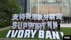 """""""野生救援""""組織義工在香港立法會前支持象牙禁貿"""