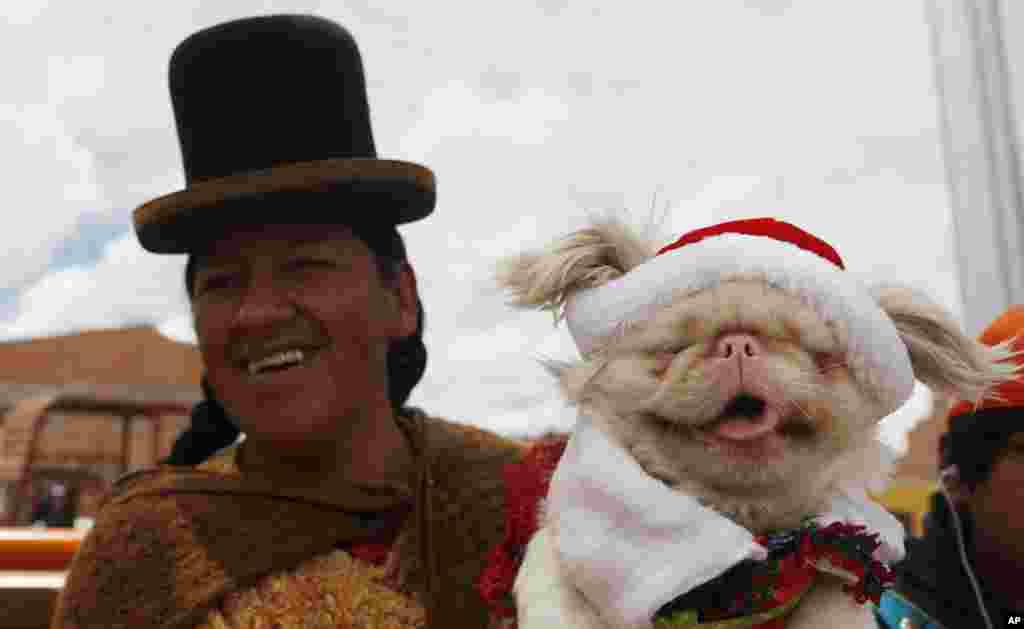 볼리비아 엘알토에서 열린 성탄절 애견 경연대회에, 한 인디오 여성이 애견을 데리고 참가했다.