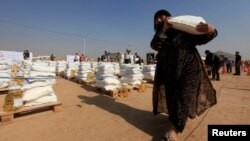 A displaced woman, who fled from Mosul due to Islamic State violence, carries food in Khazer refugee camp, east of Mosul, Iraq, Nov. 7, 2016.