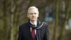 جولیان آسانژ بنیانگذار وبسایت افشاگر ویکی لیکس