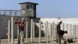 O'zbekiston: qiynoqlar haqida yangi daraklar - Malik Mansur