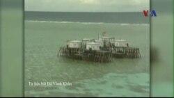 Philippines phản đối Trung Quốc cải tạo đất ở một bãi san hô