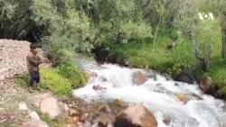 طبیعت زیبای بامیان در فصل تابستان