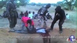 尼日利亚被指在打击博科圣地时侵犯人权