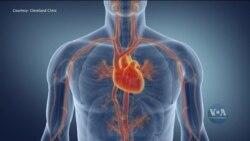 Як коронавірус впливає на роботу серця? Відео