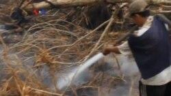 Kebakaran Hutan di Indonesia, Tragedi Yang Bisa Dicegah