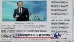 中国媒体看世界:王岐山胡锦涛为何喜欢韩剧