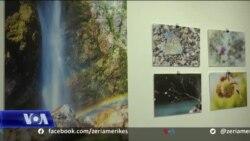 Promovimi i natyrës përmes fotografisë