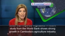 Cambodian Farmers Are Growing More Vegetables
