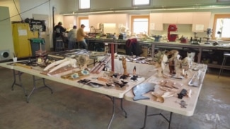 Art Thrives Among Hunters, Fishers in Northernmost Alaska