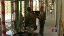 加州民众将投票决定废除死刑或强化死刑