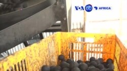 Manchetes Africanas 6 Julho 2017:Empresa no Quénia produz material prensado a partir de dejectos humanos