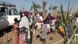 Les victimes de Boko Haram sont en état de stress post-traumatique (vidéo)