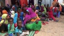 Somalia Declared Free of Polio