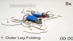 Robot Self Assembly
