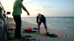 2015-08-30美國之音視頻新聞:歐洲呼籲召開緊急會議應付移民危機