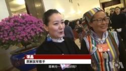两会直击:谭晶、黄奇帆露面 军内照习近平指示反腐