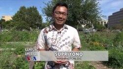 Kampung Amerika: Kiat UKM Memanfaatkan Buah dan Sayuran Jelek