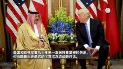 反映美国政府政策立场的视频社论:加强美国和巴林间的关系