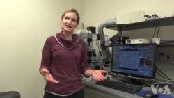 미국 '뇌의 비밀' 연구 지원