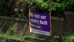 Immigration, Business Worries Drive Britain's EU Debate