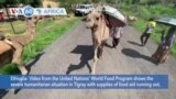 VOA60 Africa- Video from the United Nations' World Food Program shows the severe humanitarian situation in Tigray
