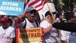 Hewilên Dersinorkirina 100 Hezaran li Washington Hatin Protesto Kirin