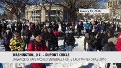 Washingtonians Hold Traditional Dupont Circle Snowball Fight