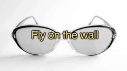 Anglais Express : Fly on the wall