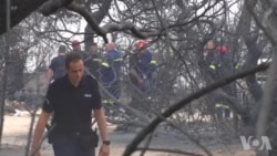 希腊雅典附近山火造成至少49人死亡