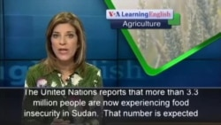 Four Million Sudanese Face Food Insecurity