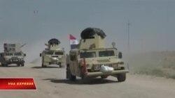 Iraq tuyên bố Fallujah hoàn toàn được giải phóng, chuẩn bị chiếm lại Mosul