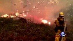 加州山火肆虐,仍无减弱迹象