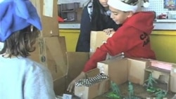 Boy's Cardboard Creation Becomes Web Sensation