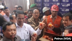 Menteri Pertanian Amran Sulaiman (baju putih) bersama Komisi IV DPR RI meninjau kontainer buah asal China yang tidak sesuai dokumen dan berpenyakit di Balai Besar Karantina Pertanian Surabaya, 4 Maret 2016 (Foto: VOA/Petrus)