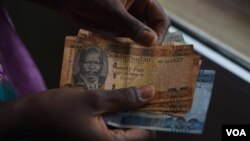 A person counts South Sudanese pounds in Juba on April 28, 2016. The value of the South Sudanese pound has dropped by nearly 90 percent since the country's civil war began more than two years ago. (J. Patinkin/VOA)