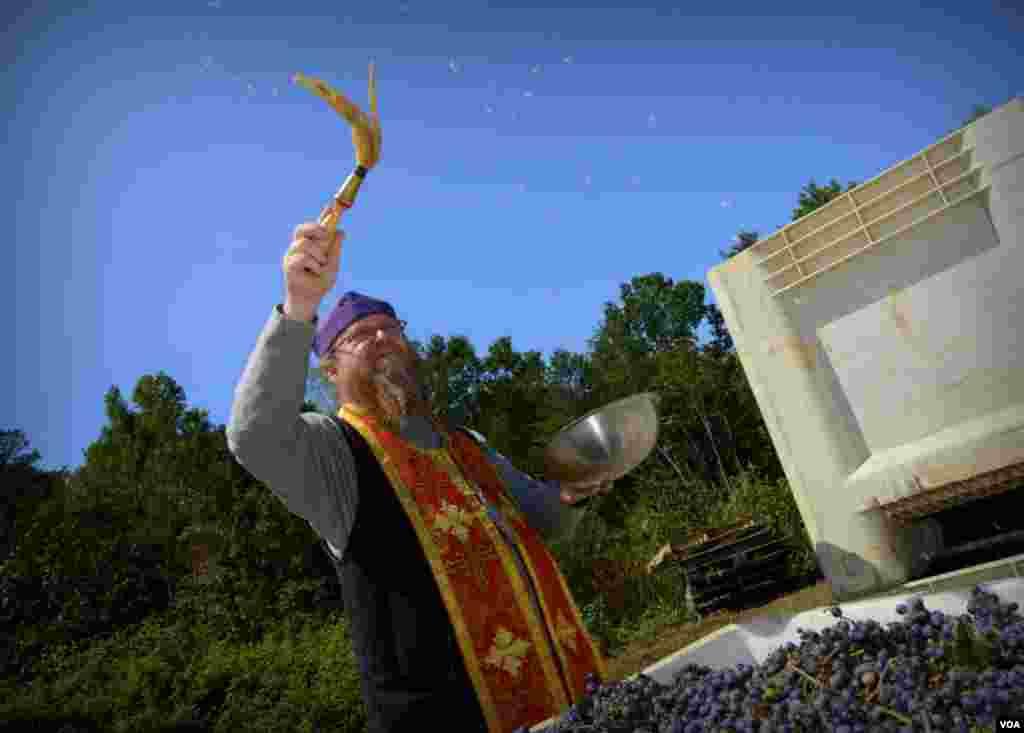 Священник Русской зарубежной церкви Стивен Веб по традиции освящает урожай на винодельне у часовни Святой Анны (Russian Chapel Hills Winery)