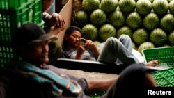 A worker holds his cell phone as he rests next to watermelons at the Kramat Jati central market in Jakarta, March 4, 2011.