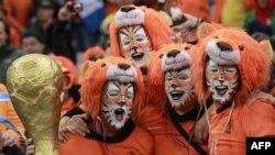 Ủng hộ viên Hà Lan ăn mặc như những con sư tử tại Cape Town, Nam Phi
