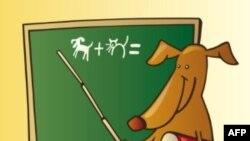 Hỏi đáp Anh ngữ: Phân biệt class và classroom