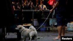 资料照:广西玉林市一名牵着宠物犬的人路过卖狗肉的摊子。(2018年6月21日)