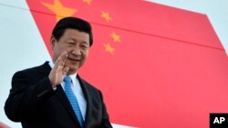 Tổng bí thư Trung Quốc Tập Cận Bình đã mở màn năm đầu tiên lên nắm quyền bằng nỗ lực rất lớn để diệt trừ tham nhũng.