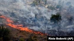 Dim se diže iznad drveća koje je izgorelo u šumskom požaru na planini u blizini Podgorice (AP Photo/Risto Božović)